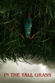 In the Tall Grass (2019) Sub Indo
